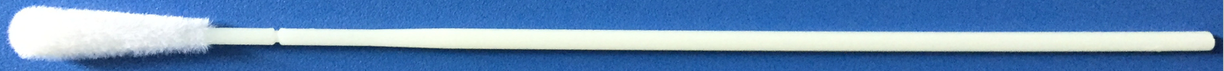 Cleanmo safe flocked swab factory for cytology testing-14